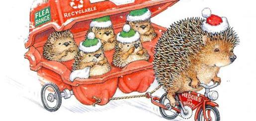 Christmas card image hedgehog